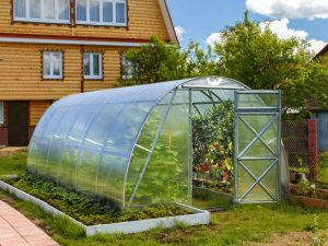 GREENHOUSE OPTIMA 12m²