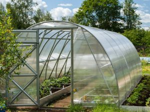 GREENHOUSE OPTIMA 18m²