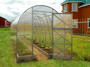 GREENHOUSE TUNNEL 8m²