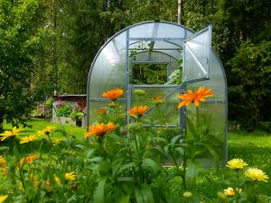 GREENHOUSE TUNNEL 4m²