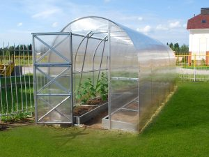 GREENHOUSE TUNNEL 12m²